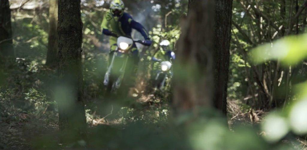 草や木々越しのバイク