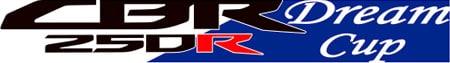 CBR250R DreamCup